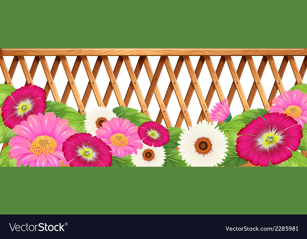 A garden of flowers with a fence vector | Price: 1 Credit (USD $1)