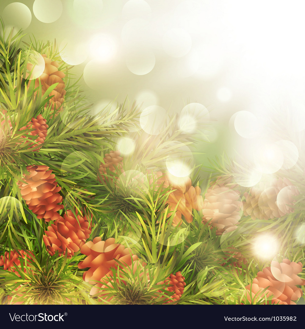 Fir tree brunches vector | Price: 1 Credit (USD $1)