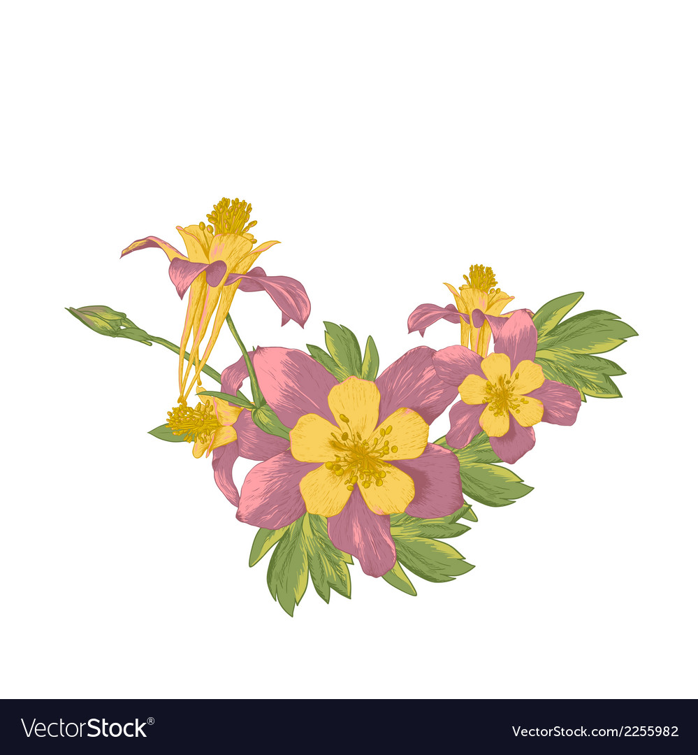 Frame with white blooming flowers vector | Price: 1 Credit (USD $1)