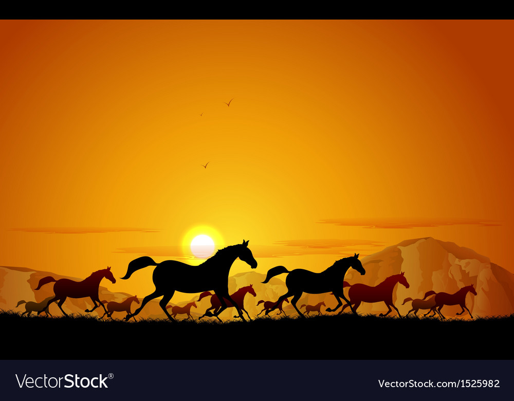 Horses running in field vector | Price: 1 Credit (USD $1)