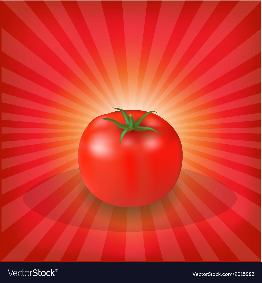 Sunburst background with red tomato vector | Price: 1 Credit (USD $1)