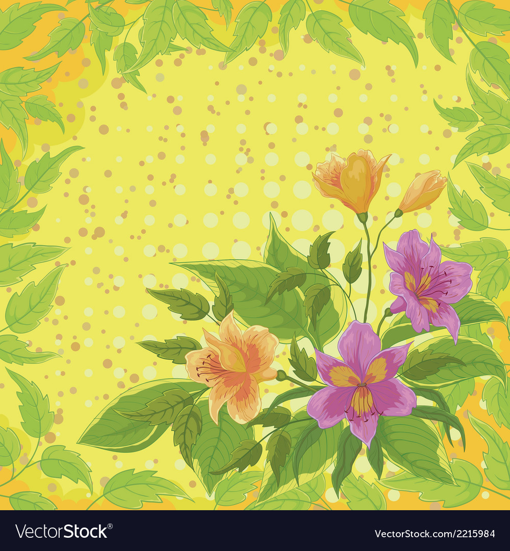 Flowers alstroemeria and leafs vector | Price: 1 Credit (USD $1)