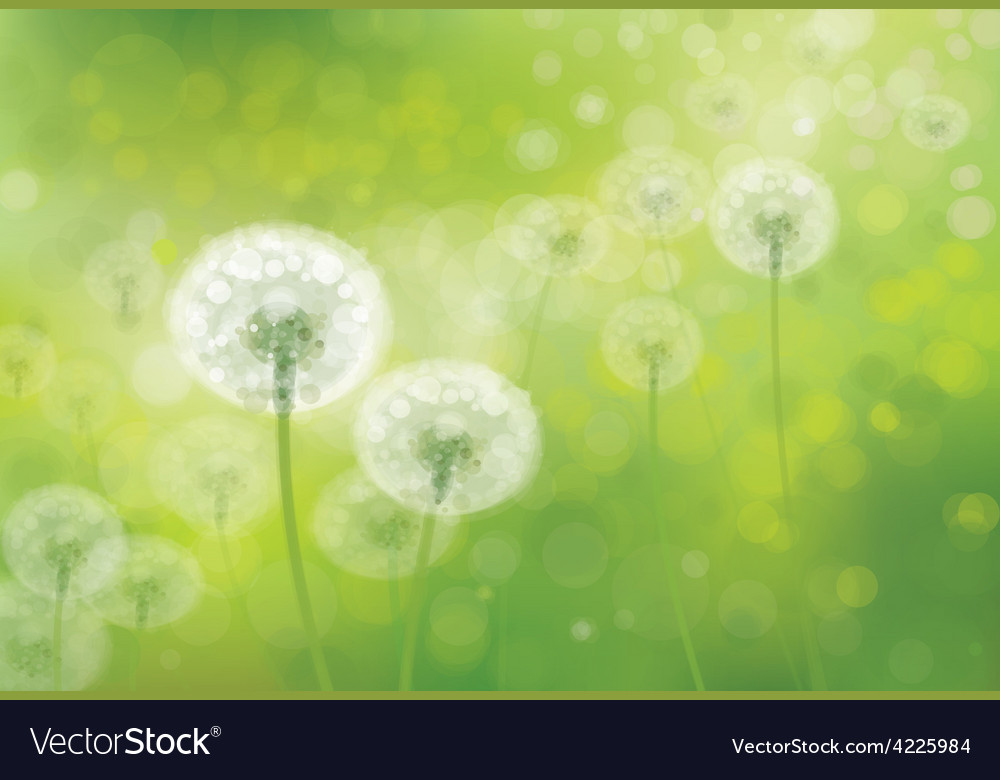 Spring background field vector | Price: 1 Credit (USD $1)