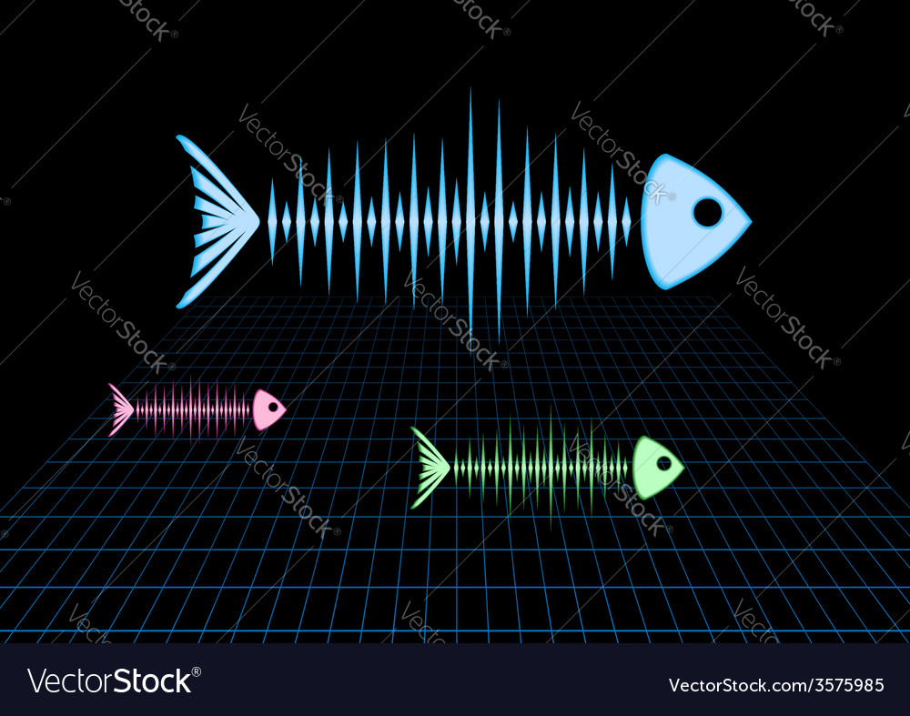 Sonar fishes vector | Price: 1 Credit (USD $1)