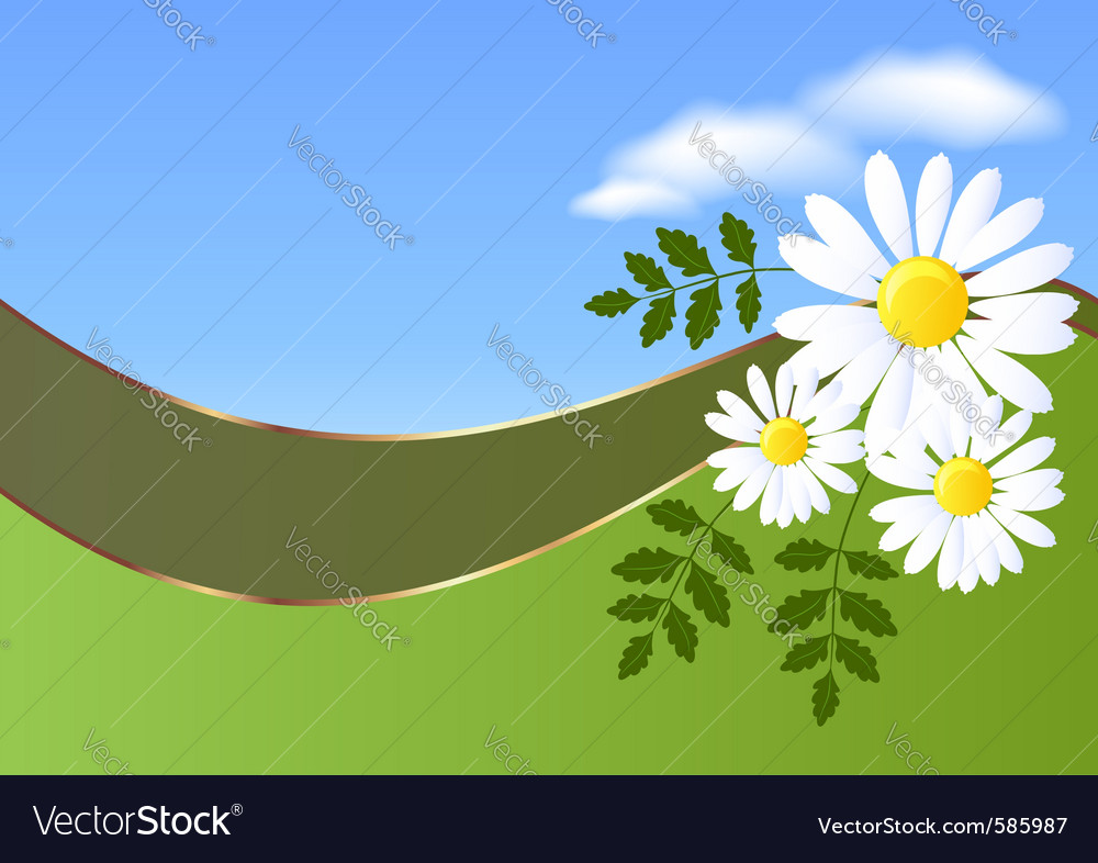 Daisy and clouds vector | Price: 1 Credit (USD $1)