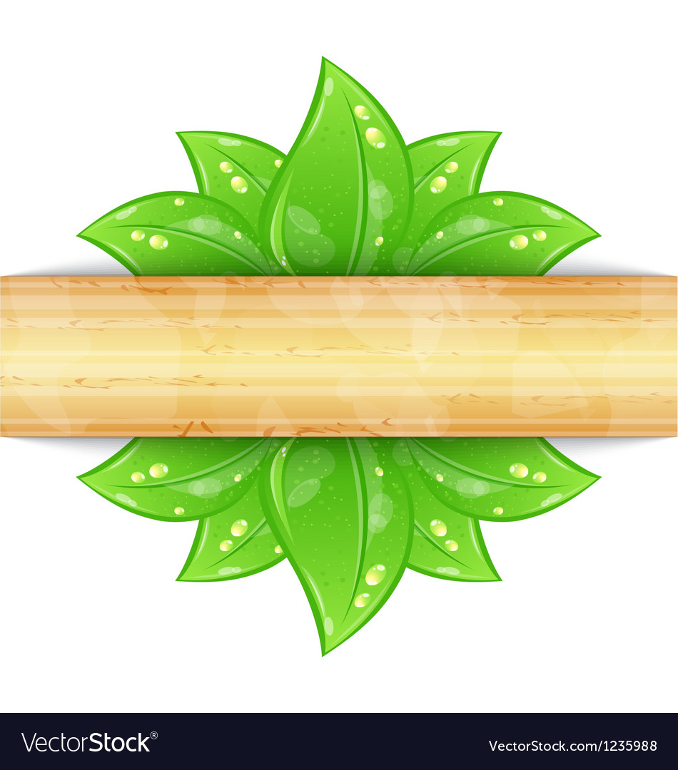 Eco friendly background with green leaves wooden vector | Price: 1 Credit (USD $1)