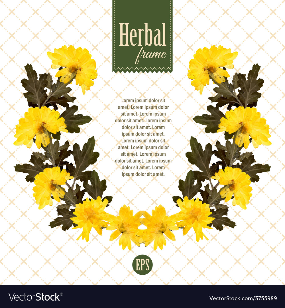 Herbarium wreath of natural yellow flowers vector | Price: 1 Credit (USD $1)