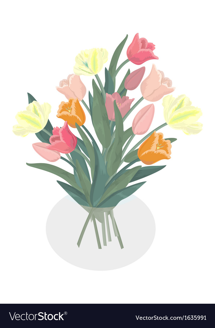 Bouquet of tulips in glass vase vector | Price: 1 Credit (USD $1)