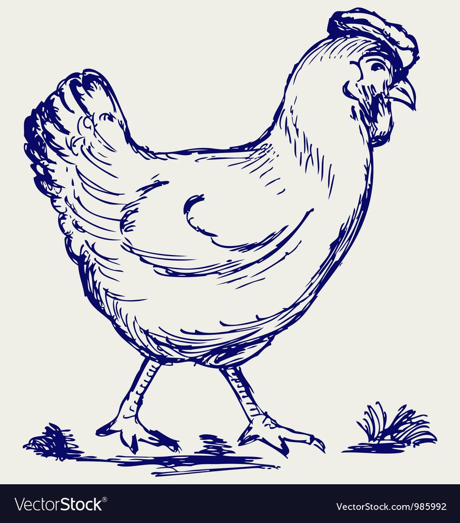 Chicken vector | Price: 1 Credit (USD $1)