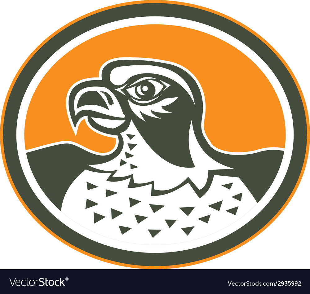 Falcon head side oval retro vector | Price: 1 Credit (USD $1)