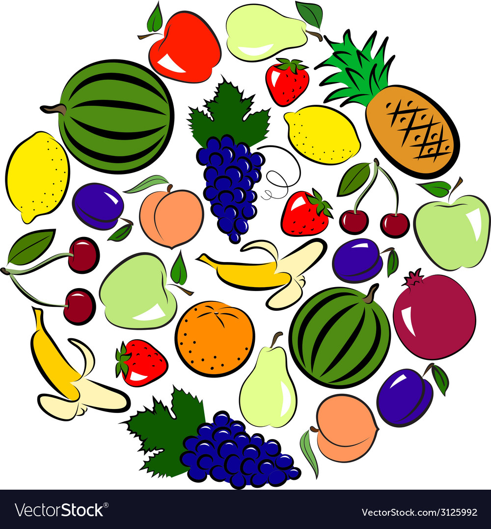 Fruits circle vector | Price: 1 Credit (USD $1)