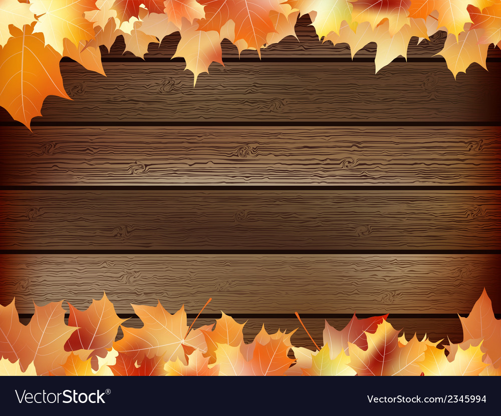 Autumn background with colored leaves plus eps10 vector | Price: 1 Credit (USD $1)