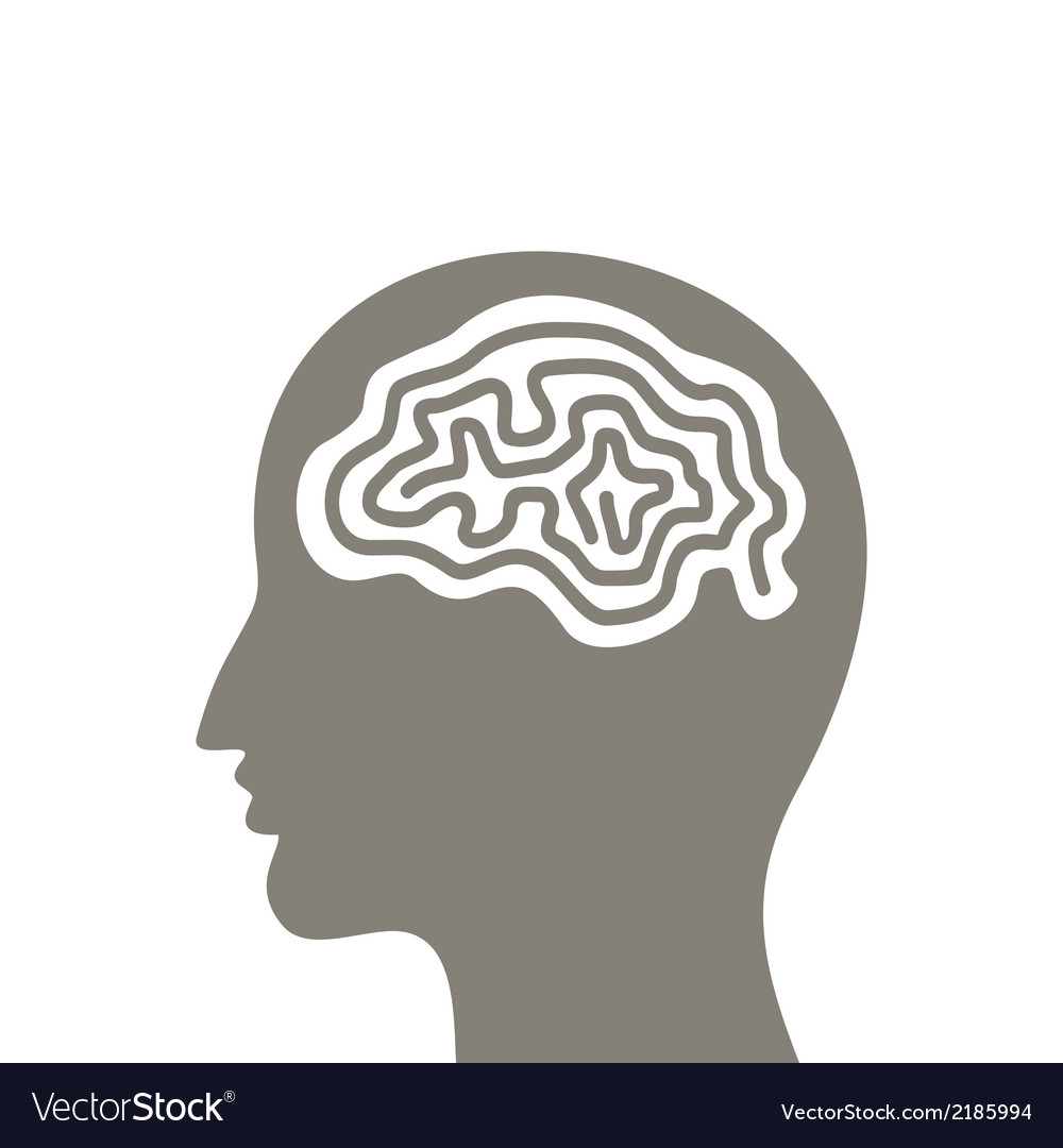 Head a brain vector | Price: 1 Credit (USD $1)