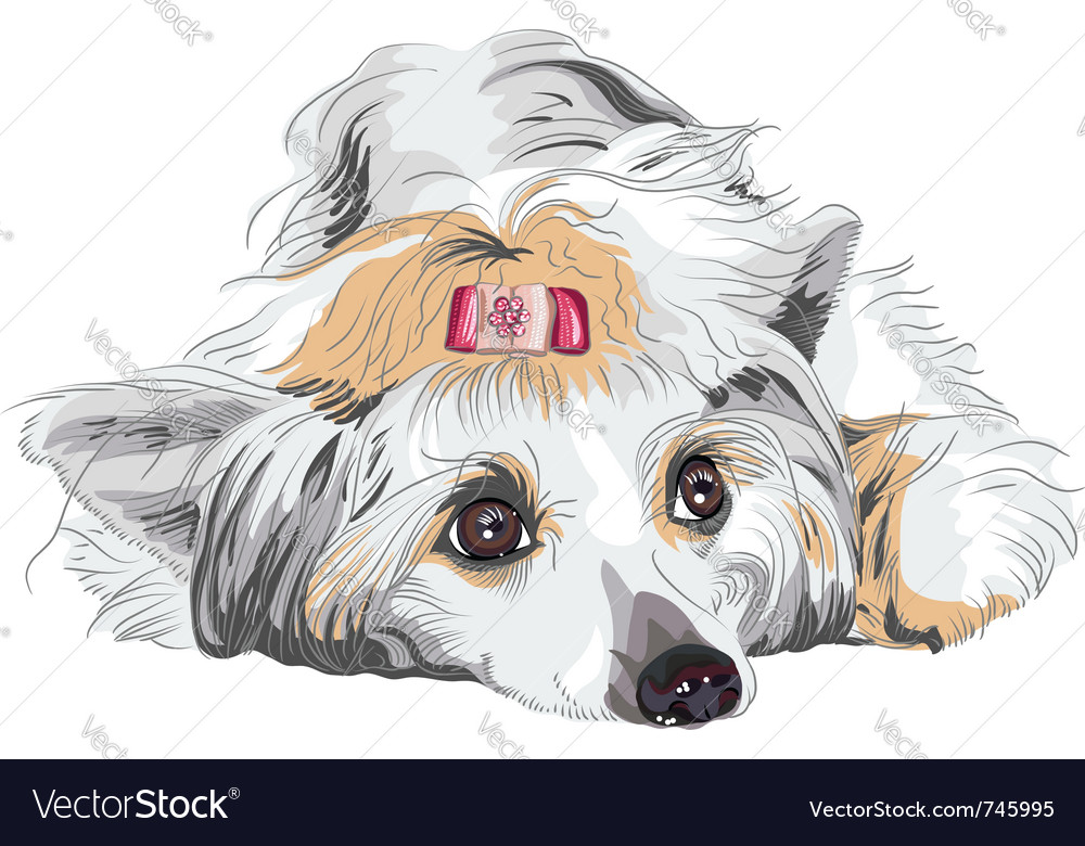 Portrait of a dog vector | Price: 3 Credit (USD $3)