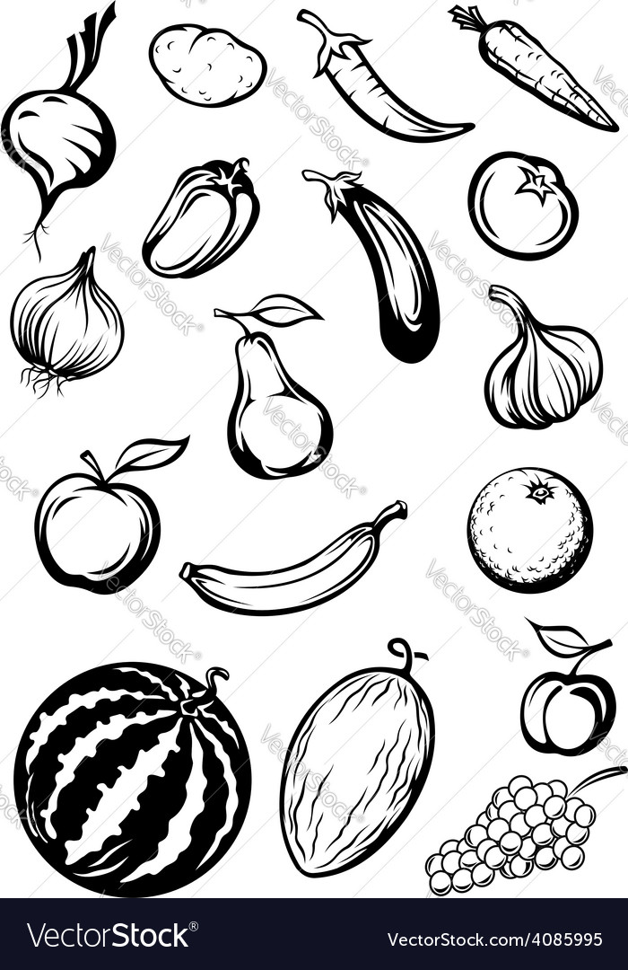 Variety sketches of fruits and vegetables vector | Price: 1 Credit (USD $1)