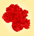 Red hibiscus tropical flowers blossom simple vector