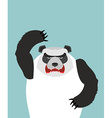 Angry panda bear vector