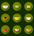 Fruit set background include apple coconut papaja vector