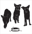 Dogs near a bowl vector