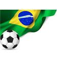 Brasil flag soccer vector