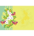 Abstract flowers and berries with background vector
