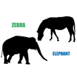 Zebra and elephant vector