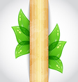 Eco friendly background with green leaves wooden vector