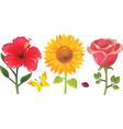 3flowers vector