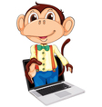 Monkey laptop display vector