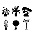 Tree silhouettes collection vector
