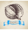 Seashell hand drawn sketch vector