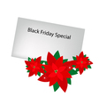Red poinsettia flowers with black friday letter vector