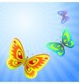 Butterflies in the sky vector