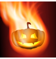 Burning pumpkin vector