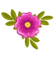 Dogrose flower and leaves vector