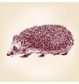 Hedgehog hand drawn llustration realistic sketch vector