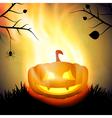 Halloween background with burning pumpkin vector