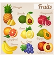 Set of food icons fruits vector