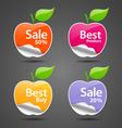 Apple sale price tag vector