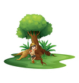 A young girl near the giant tree vector