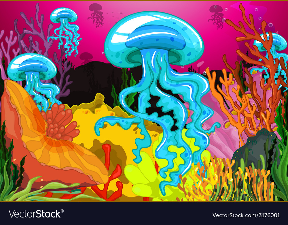 Jelly fish vector | Price: 3 Credit (USD $3)