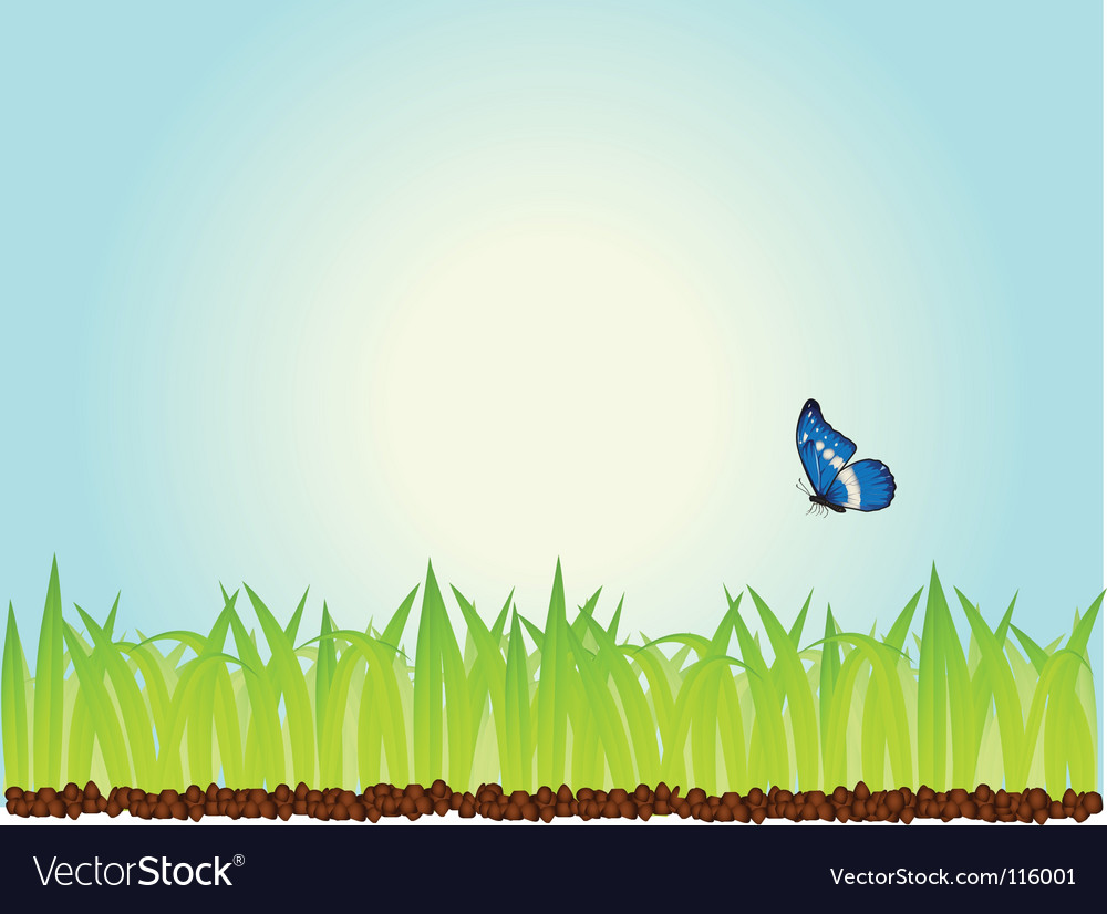 Morning grass vector | Price: 1 Credit (USD $1)