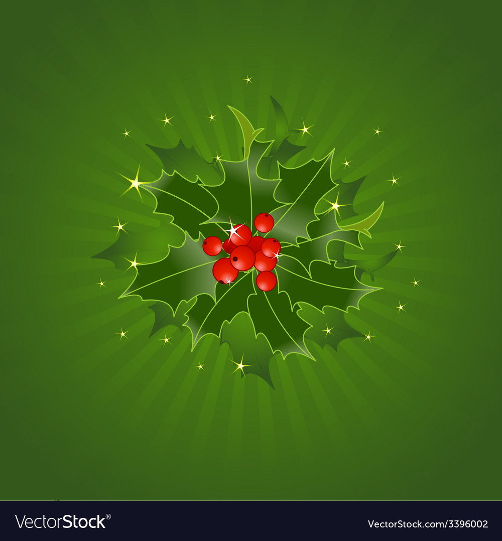 Christmas holly on green vector | Price: 1 Credit (USD $1)