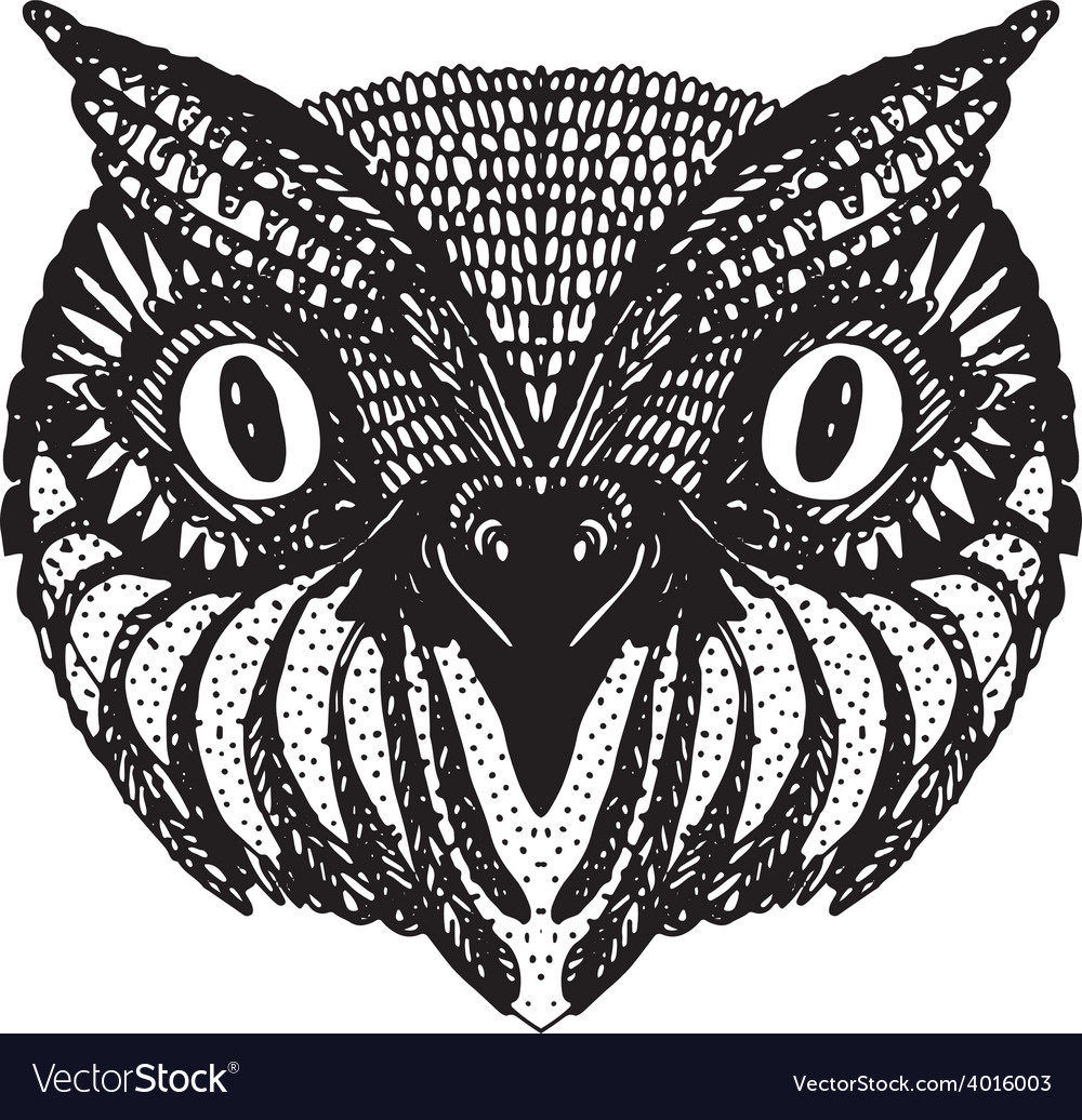 Owl head doodle hand drawn on white background vector | Price: 1 Credit (USD $1)
