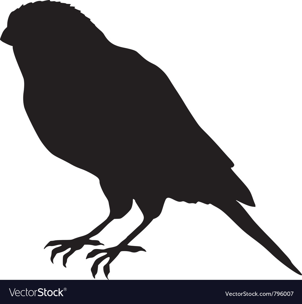 Black silhouette of canary vector | Price: 1 Credit (USD $1)