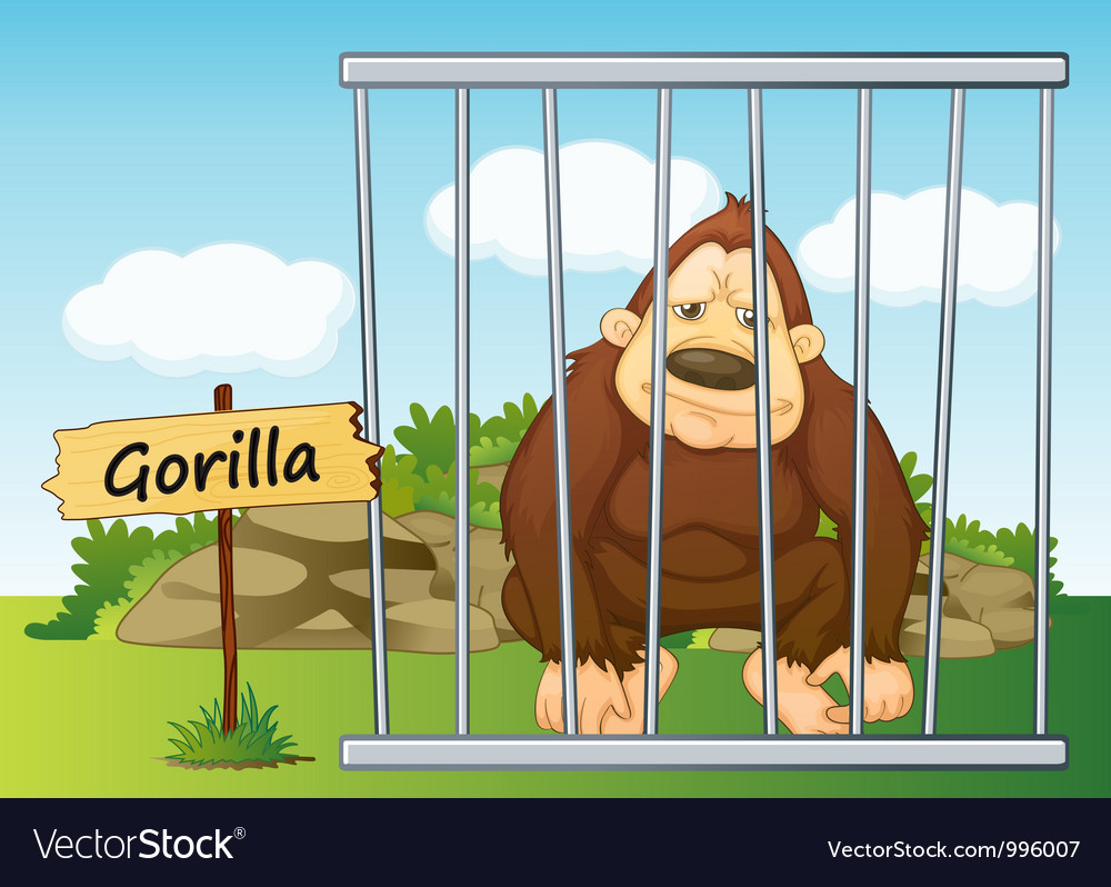 Gorilla in cage vector | Price: 3 Credit (USD $3)