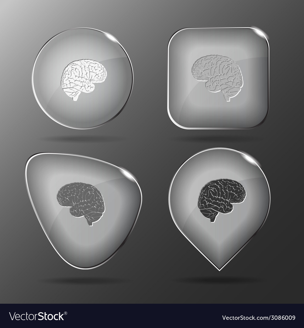 Brain glass buttons vector | Price: 1 Credit (USD $1)