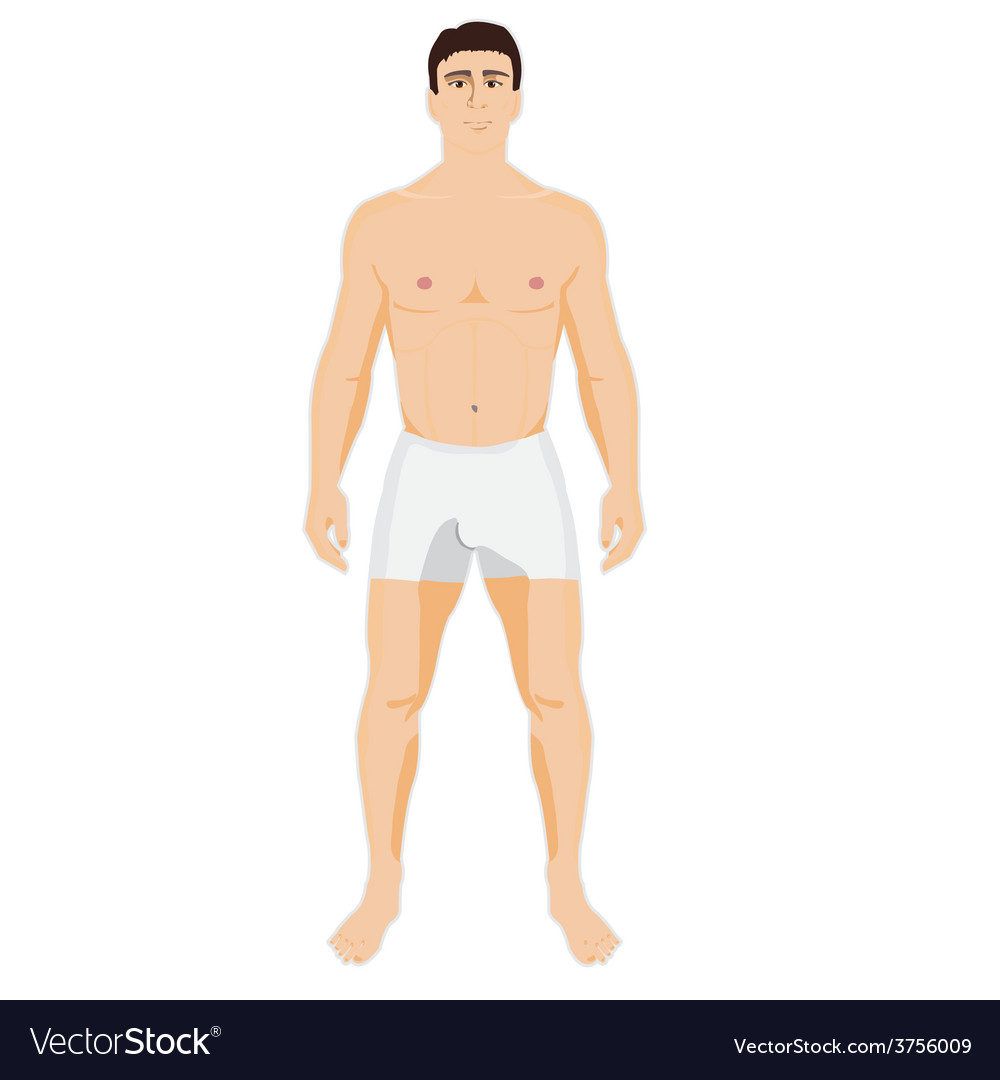 Man is standing in the underwear vector | Price: 1 Credit (USD $1)