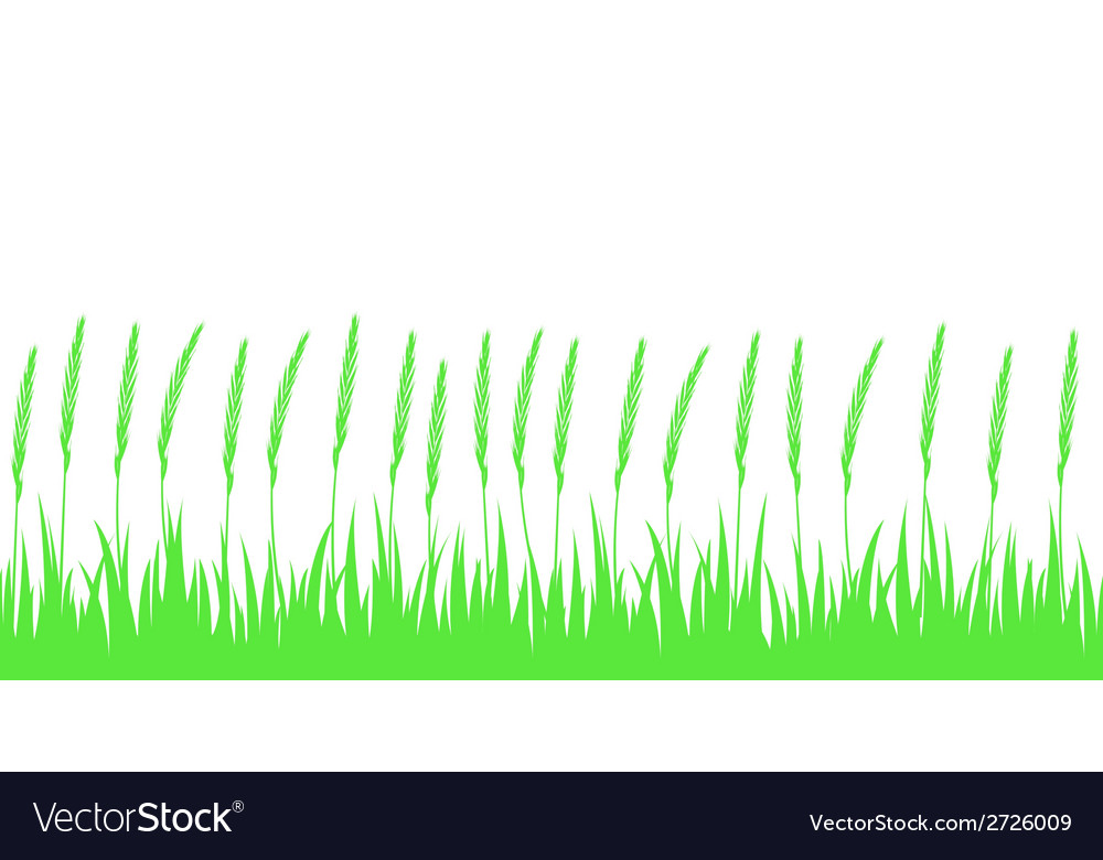 Seamless green grass and ears vector | Price: 1 Credit (USD $1)