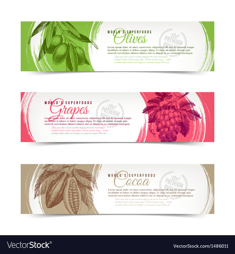 Banners with hand drawn foods vector | Price: 1 Credit (USD $1)